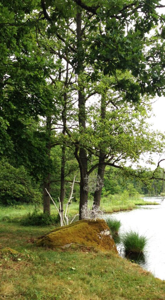 """""""Där vinden vilar"""" installation av metall och trä."""